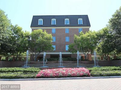 Chevy Chase Condo For Sale: 8101 Connecticut Avenue #N-401