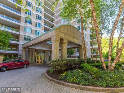 Chevy Chase Condo For Sale: 5630 Wisconsin Avenue #1104