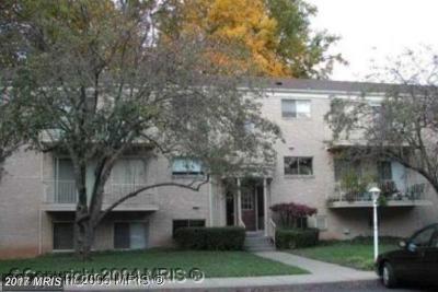 Bethesda Condo For Sale: 10607 Montrose Avenue #M-101