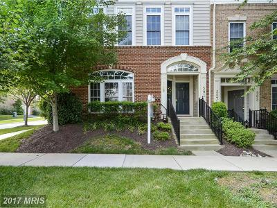 Gaithersburg Townhouse For Sale: 589 Odendhal Avenue
