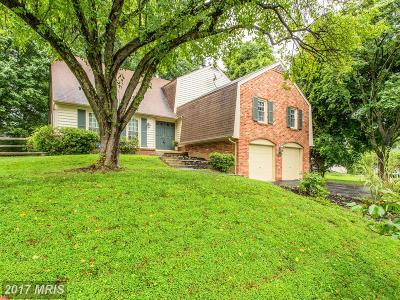 Montgomery Village Single Family Home For Sale: 9921 Dellcastle Road