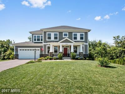 Poolesville Single Family Home For Sale: 19612 Lewis Orchard Lane