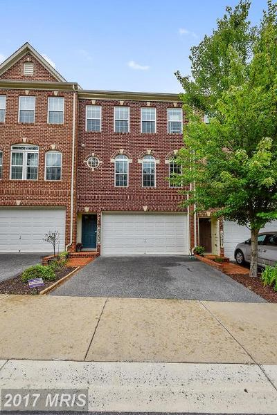 Clarksburg Townhouse For Sale: 23403 Forest Haven Way