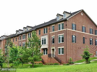 Gaithersburg Townhouse For Sale: 412 Hackberry Place