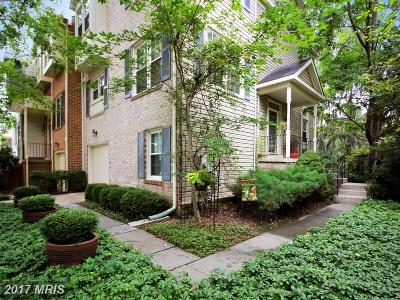 Gaithersburg Townhouse For Sale: 20424 Davencroft Court
