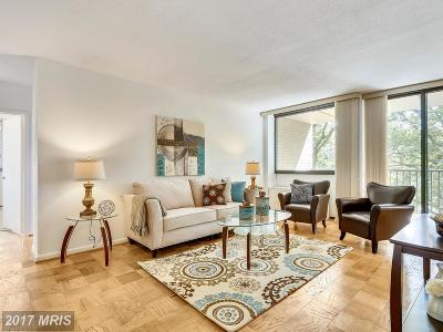 Chevy Chase Condo For Sale: 4242 East West Highway #507
