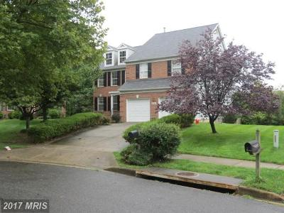 Silver Spring Single Family Home For Sale: 2126 Queensguard Road