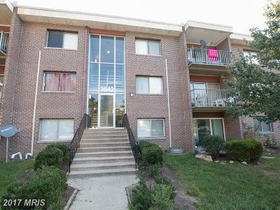 Silver Spring Condo For Sale: 3842 Bel Pre Road #1