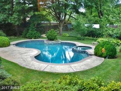 Silver Spring Single Family Home For Sale: 605 Cobblestone Court