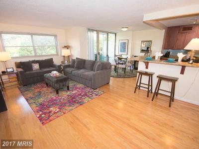 Takoma Park Condo For Sale: 7333 New Hampshire Avenue #709