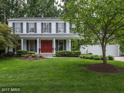 Potomac Single Family Home For Sale: 1138 Halesworth Drive