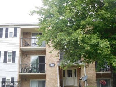 Gaithersburg Condo For Sale: 8203 Whispering Oaks Way #203
