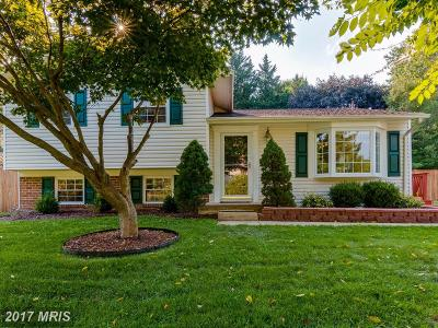 Single Family Home For Sale: 24008 Log House Road