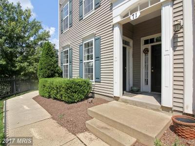 Gaithersburg Townhouse For Sale: 71 Swanton Mews #100