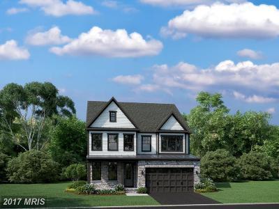 Clarksburg Single Family Home For Sale: 22028 Fulmer Avenue