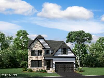 Clarksburg Single Family Home For Sale: 21818 Fulmer Avenue