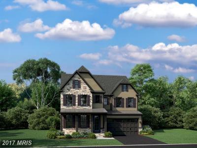 Clarksburg Single Family Home For Sale: 21816 Fulmer Avenue