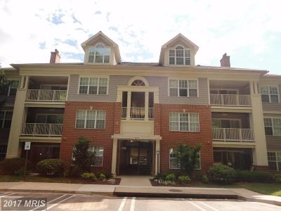 Gaithersburg Condo For Sale: 103 Timberbrook Lane #202