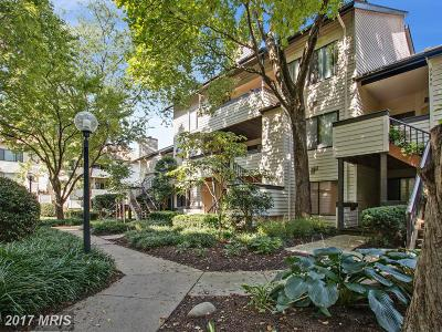 Gaithersburg Condo For Sale: 9960 Hellingly Place #177