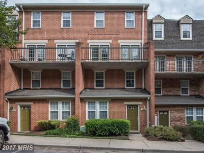 Silver Spring Single Family Home For Sale: 3807 Chesterwood Drive #1