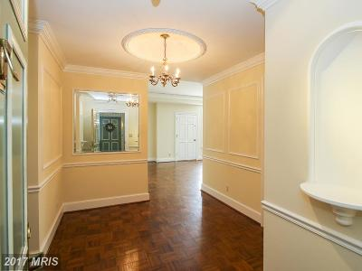 Chevy Chase Condo For Sale: 8101 Connecticut Avenue #S-508