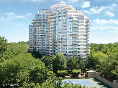 Chevy Chase Condo For Sale: 5600 Wisconsin Avenue #906