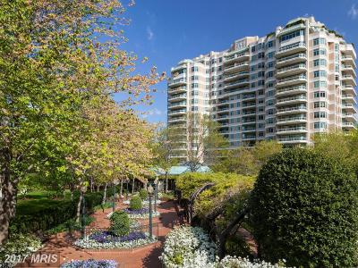 Chevy Chase Condo For Sale: 5630 Wisconsin Avenue #604