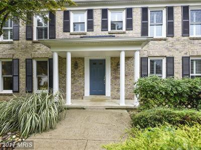 Montgomery Single Family Home For Sale: 12516 Falconbridge Drive
