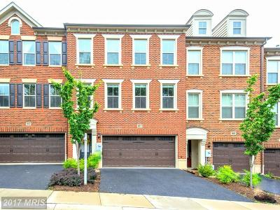 Gaithersburg Townhouse For Sale: 107 Samuel Manor Court
