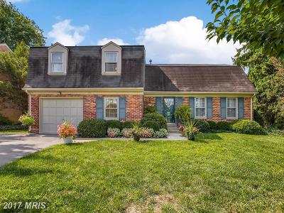 Gaithersburg Single Family Home For Sale: 19116 Pike Creek Place N