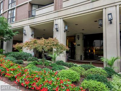 Chevy Chase Condo For Sale: 4620 Park Avenue N #505W