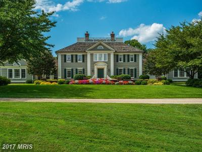 Potomac Single Family Home For Sale: 9010 Congressional Parkway