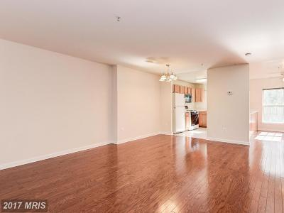 Germantown Townhouse For Sale: 13317 Rushing Water Way #3A