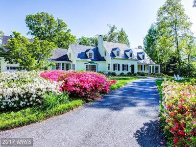Bethesda Single Family Home For Sale: 6620 Elgin Lane