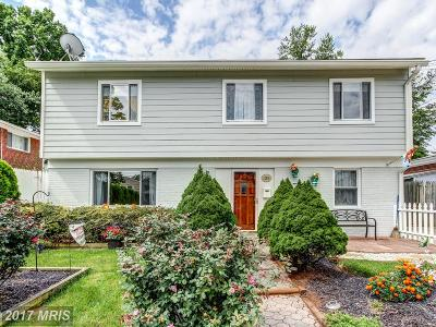 Silver Spring Single Family Home For Sale: 12916 Matey Road