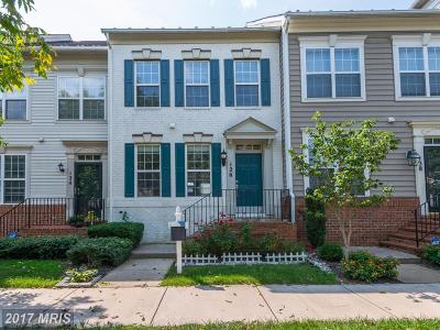 Gaithersburg Townhouse For Sale: 126 Golden Ash Way