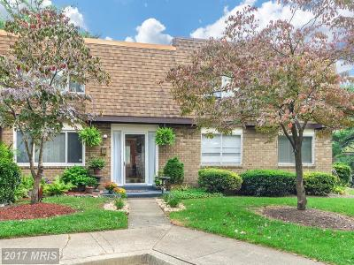 Gaithersburg Townhouse For Sale: 563 Summit Hall Road