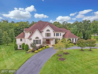 Potomac Single Family Home For Sale: 12632 Greenbriar Road