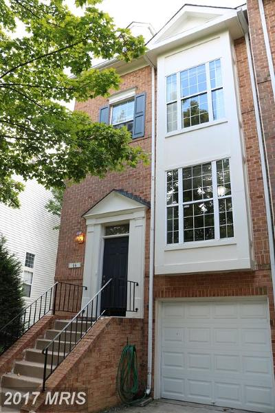 Silver Spring Townhouse For Sale: 44 Silver Moon Drive