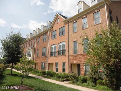 Gaithersburg Townhouse For Sale: 365 White Ash Place