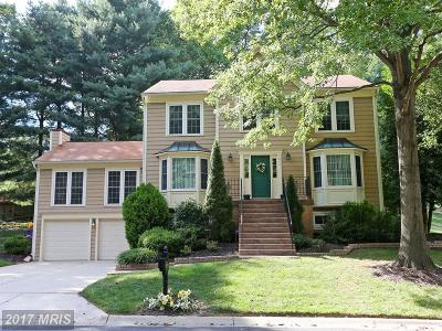 Gaithersburg Single Family Home For Sale: 9845 Mainsail Drive