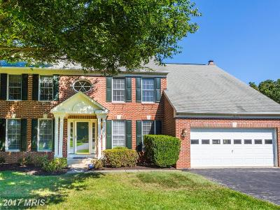 Gaithersburg Single Family Home For Sale: 20009 Manor View Terrace