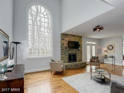 Potomac Single Family Home For Sale: 11121 Smoky Quartz Lane