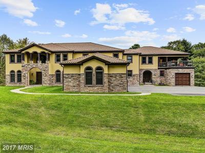 Potomac Single Family Home For Sale: 10705 Riverwood Drive