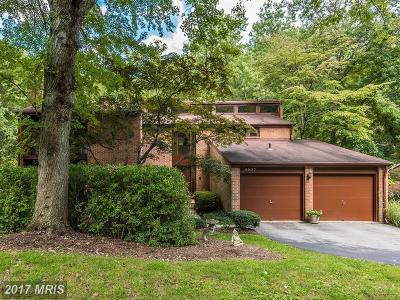 Potomac Single Family Home For Sale: 8803 Quiet Stream Court
