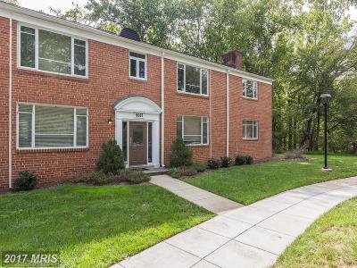 Condo For Sale: 10307 Montrose Avenue #101