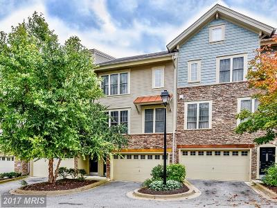 Silver Spring Townhouse For Sale: 13314 Sheffield Manor Drive #14