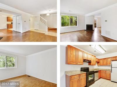 Germantown Townhouse For Sale: 18747 Curry Powder Lane