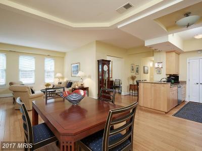 Bethesda Condo For Sale: 4821 Montgomery Lane #101