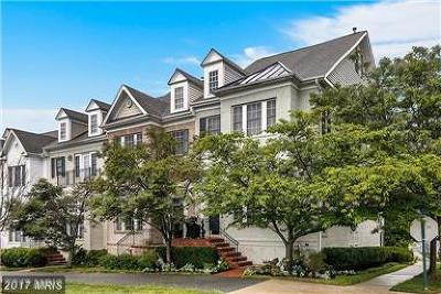 Rockville Townhouse For Sale: 1226 Gaither Road
